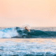 location surf fish biarritz anglet bidart