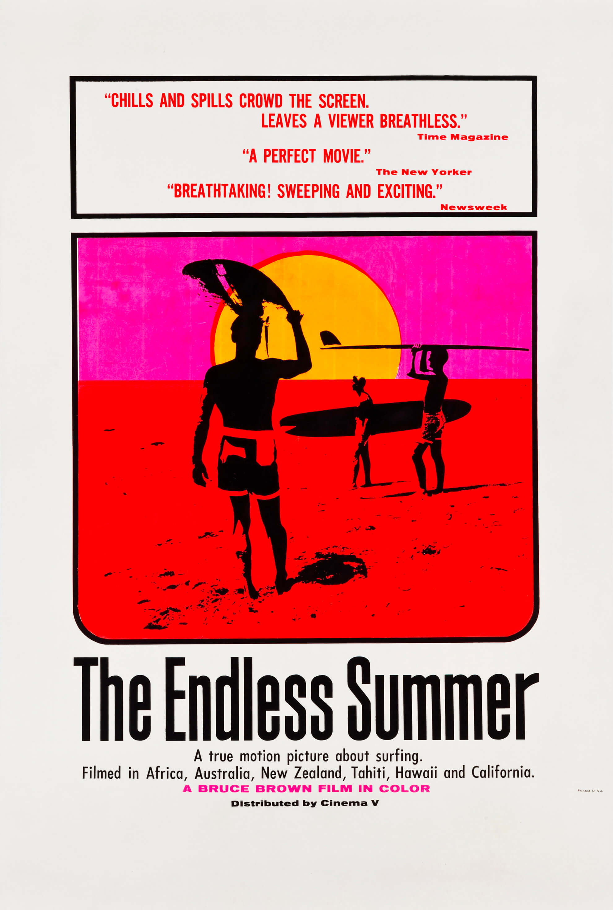 the endless summer surf